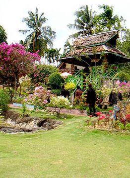Bougenville Garden