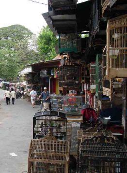 Pasar Splindit